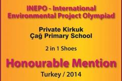 INEPO-15